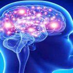 brain-bg20151124073851